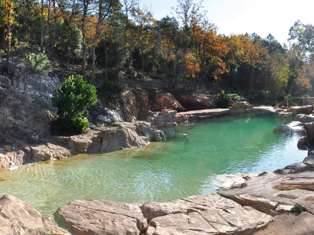 Go with the flow the beauty of natural pools eluxe magazine - Piscine naturelle ...