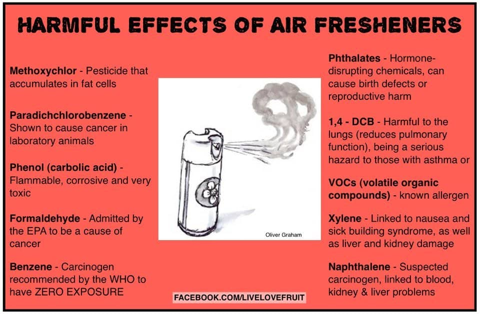 Air Freshener Dangers A Breath Of Death Air Eluxe Magazine