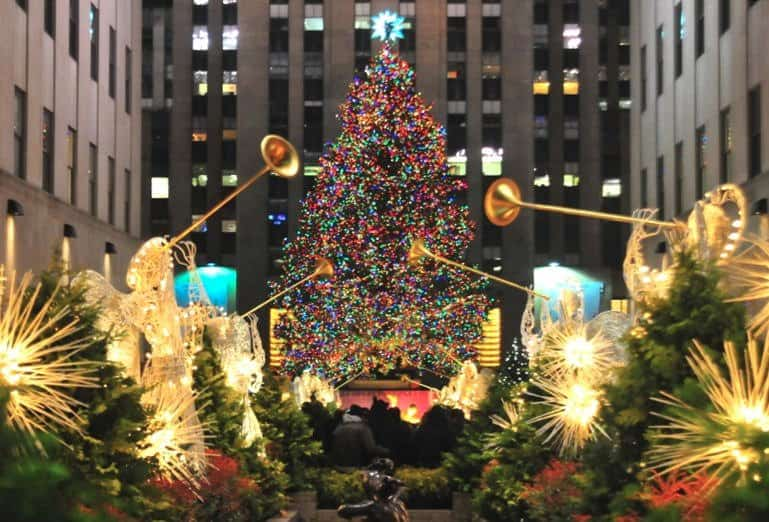 How Ethical Are Christmas Trees?