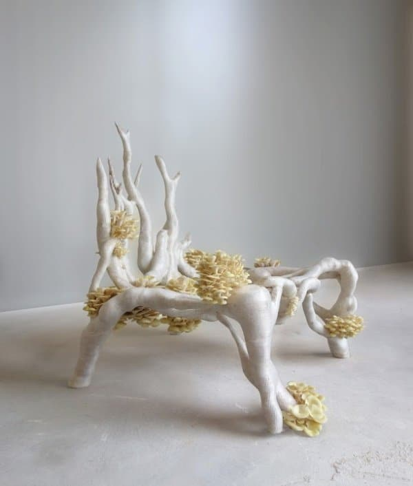 Myceliumchair_Studio_Eric_Klarenbeek-3d-printed-chair-1