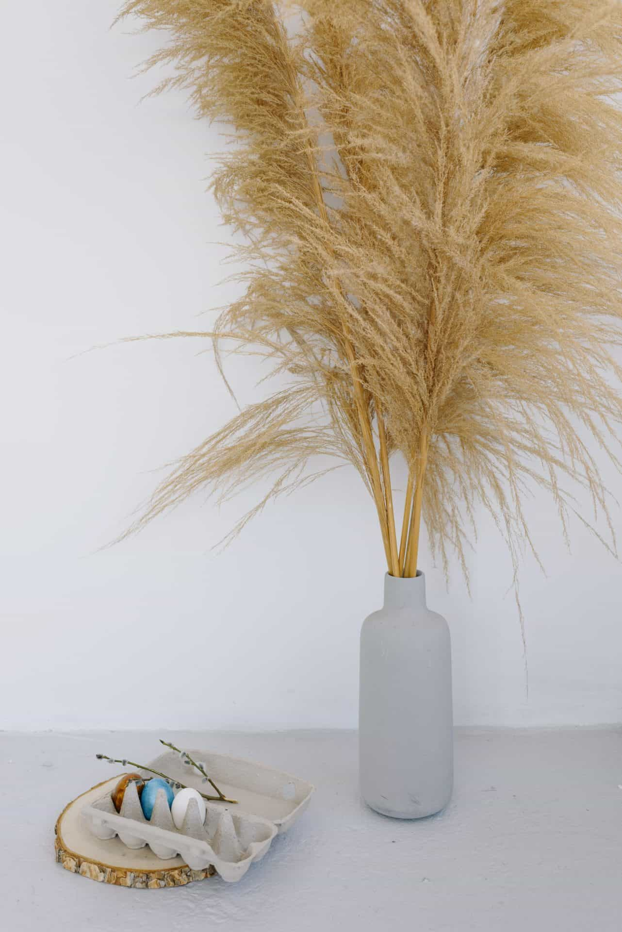 ideas for decorating with dried plants