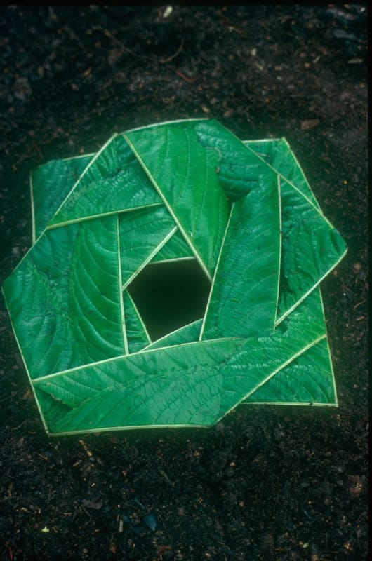 Andy Goldsworthy Art1