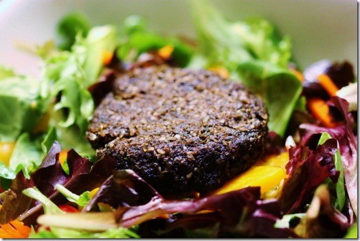 20 raw vegan recipes for every meal eluxe magazine raw vegan burger forumfinder Images