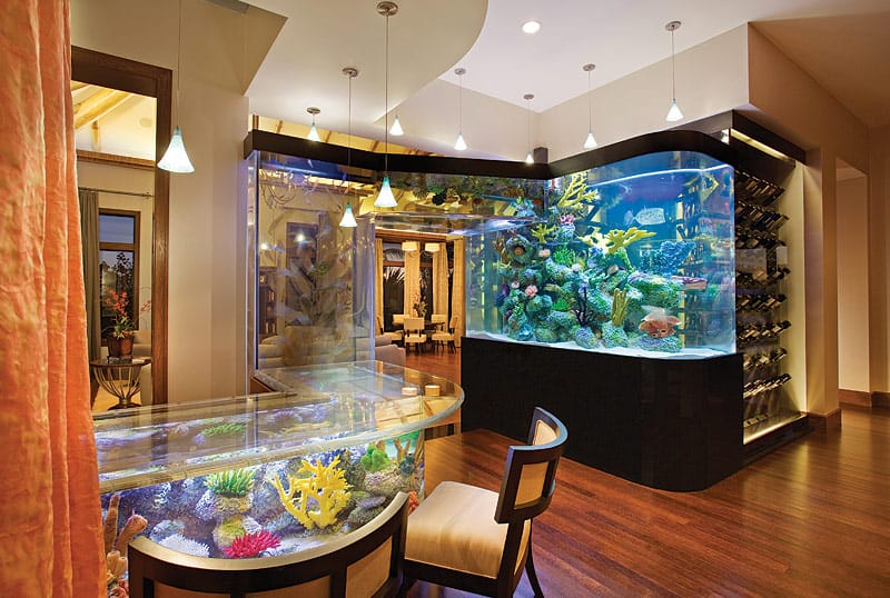 $CALMING AQUARIUM WET BAR