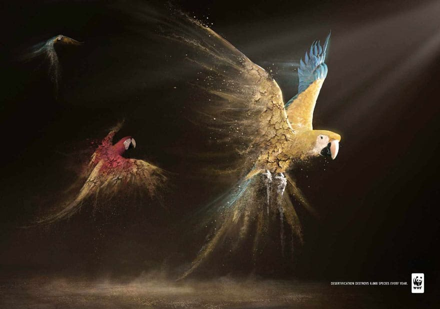 public-social-ads-animals-7
