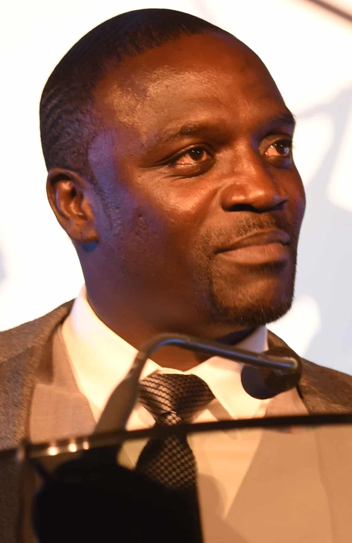 How Akon Is Lighting Up Africa