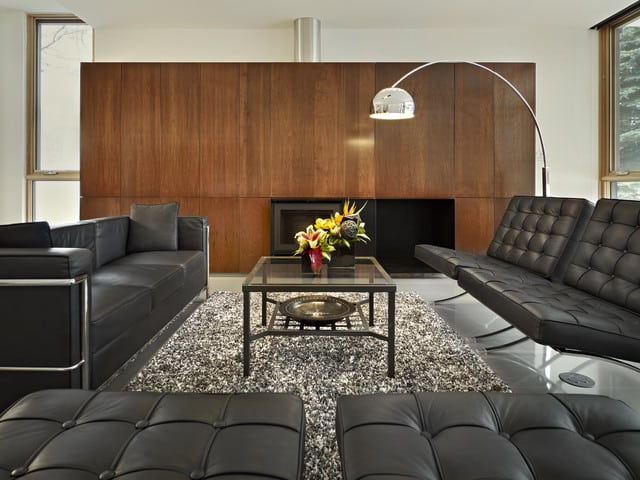 modern living room - Modernist Living Room