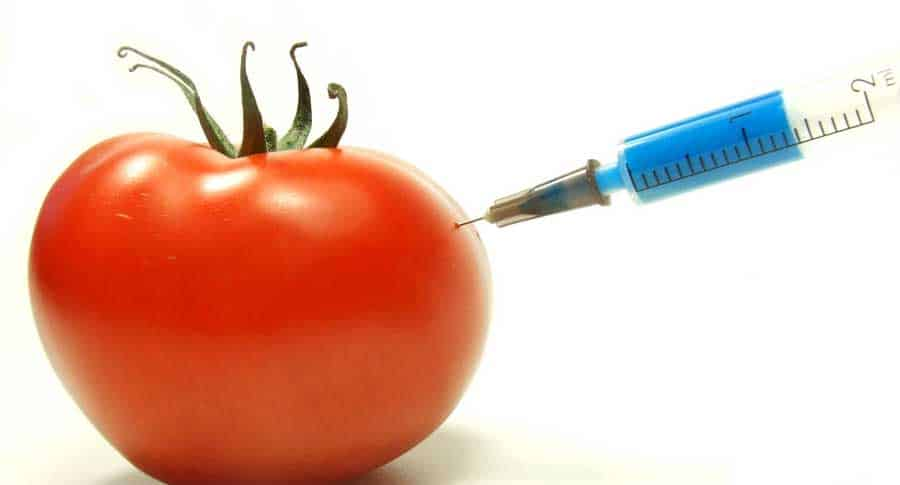 How To Eat Non Genetically Modified Foods