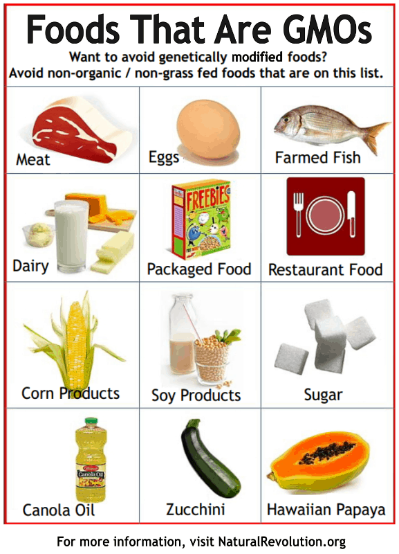 List Of Gmo Free Foods In Canada