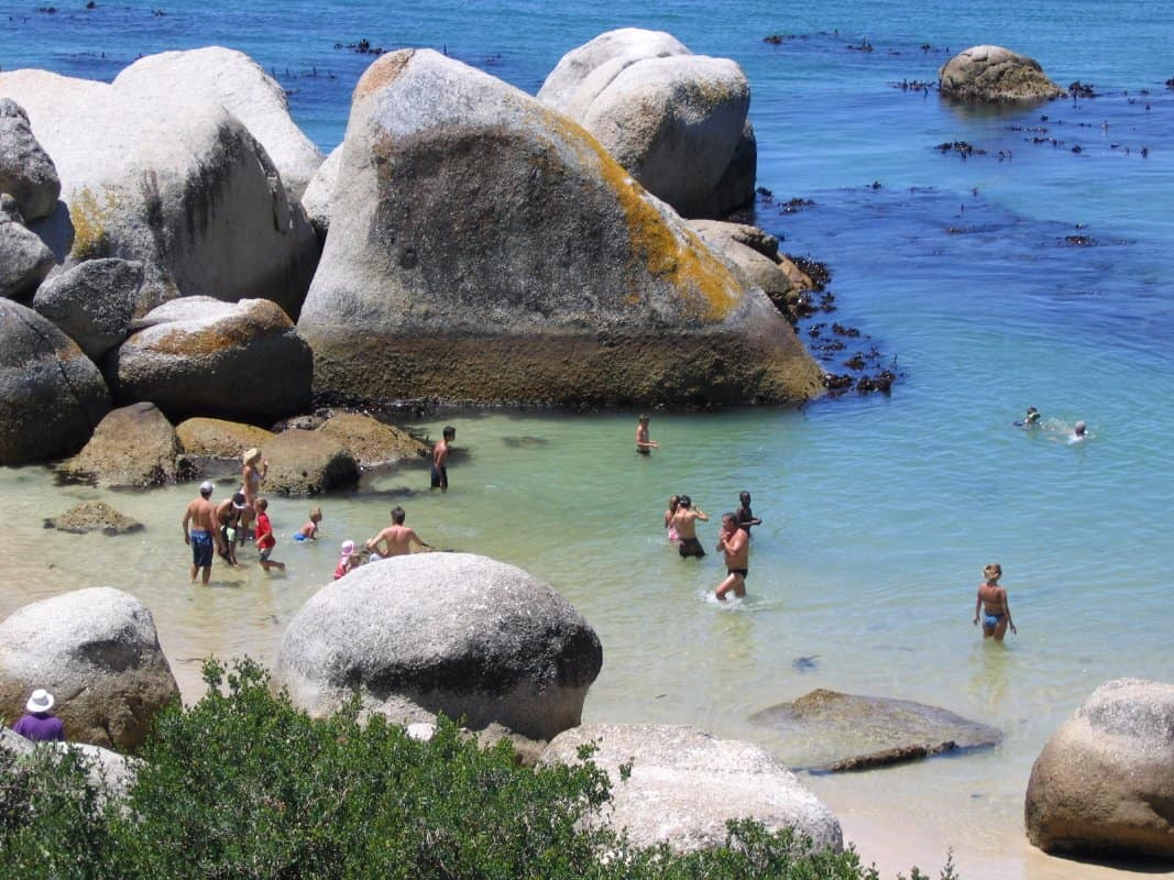 swimmers_at_boulders_beach_cape_town