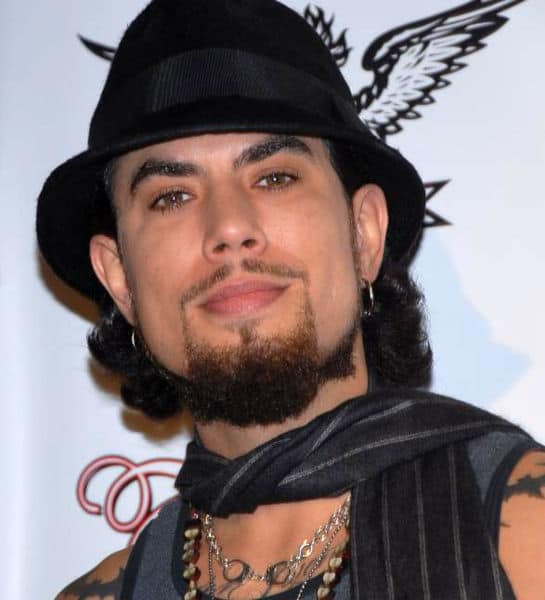 545px-dave_navarro_adjusted