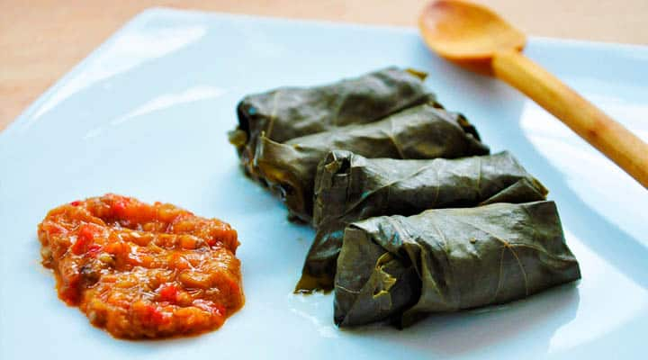 vegetarian-mushroom-and-brown-rice-dolmas-sauce1