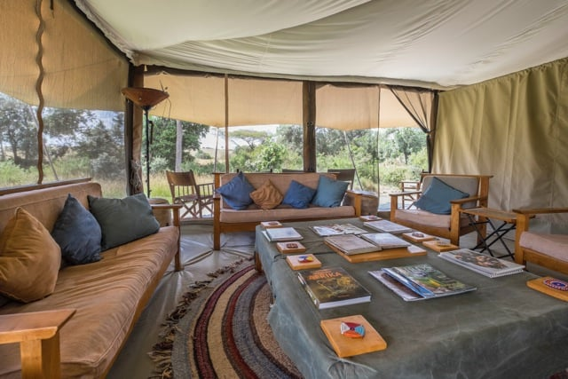 Eco Safaris in Africa