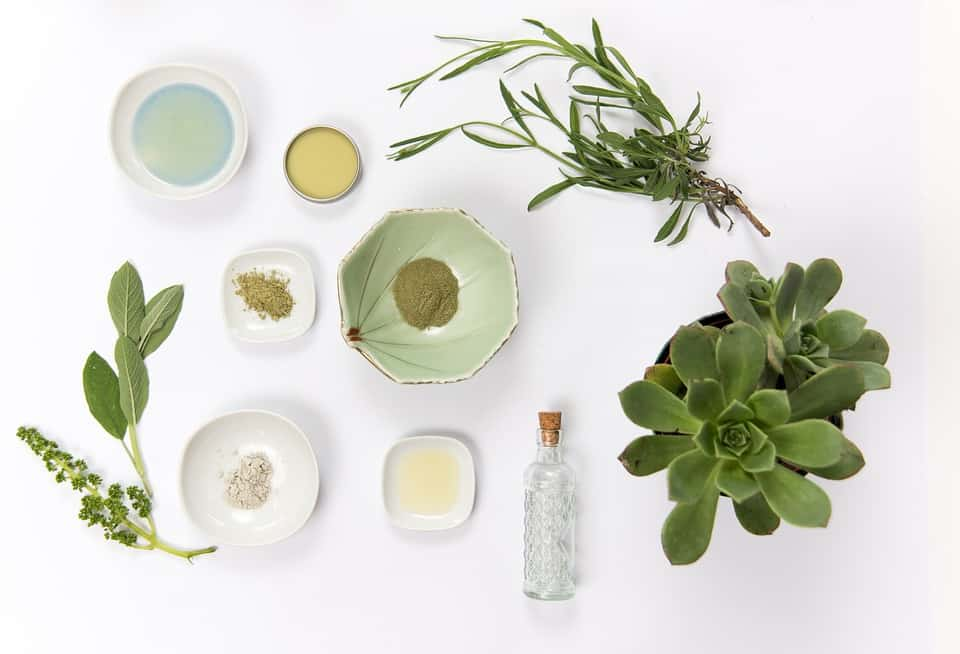 Chemistry 101 15 Of The Best Natural Skincare Ingredients To Look For Eluxe Magazine