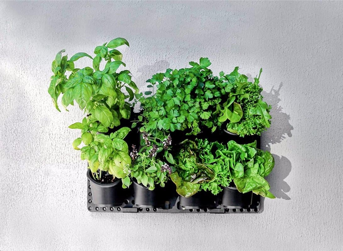 You Can Also Make Your Own Living Wall Simply Enough With Wood, Plastic  Sheeting, And A Plant Friendly Fabric. Click Here To Get The DIYs On That.