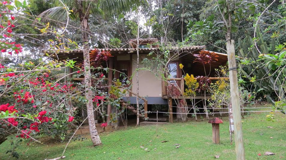 The Best Ayahuasca Retreats Around the World, Reviewed