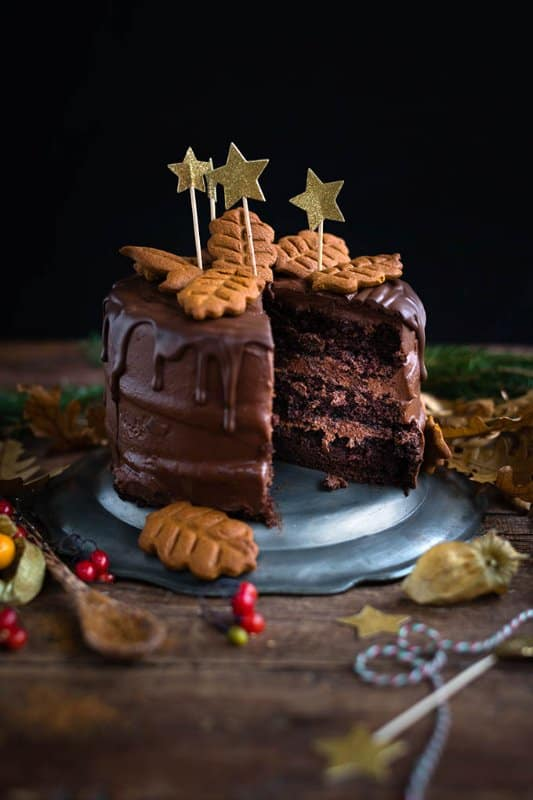 Rich Chocolate Birthday Cake